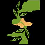 Sico Services société eco responsable
